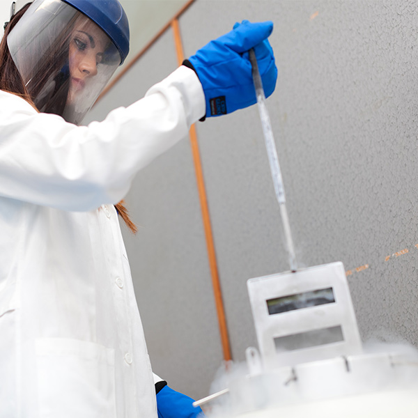 Cryopreservation control solutions 3